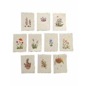 Kaart, geschept papier & env. gedroogde bloemen, Olino Papers